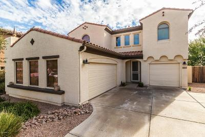 Surprise Single Family Home For Sale: 16271 W Desert Mirage Drive