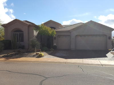 Scottsdale Single Family Home For Sale: 9363 E Sandy Vista Drive