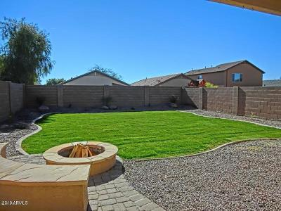 San Tan Valley Single Family Home For Sale: 1361 E Ryan Road