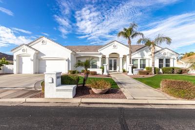 Gilbert Single Family Home For Sale: 1008 N Wren Drive