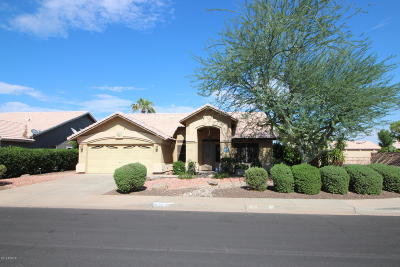 Mesa Single Family Home For Sale: 1035 S Rowen