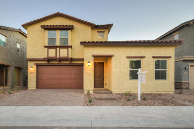 Tempe Single Family Home For Sale: 223 E Brinley Drive