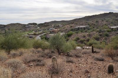 Fountain Hills Residential Lots & Land For Sale: 9817 N Rock Ridge Trail