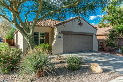 Mesa AZ Single Family Home For Sale: $249,900