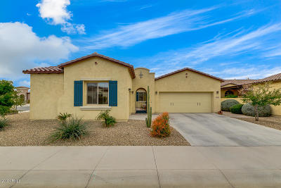 Goodyear AZ Single Family Home For Sale: $370,000