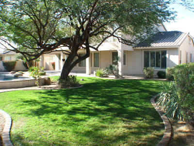 Palm Valley Single Family Home For Sale: 2739 N 144th Drive