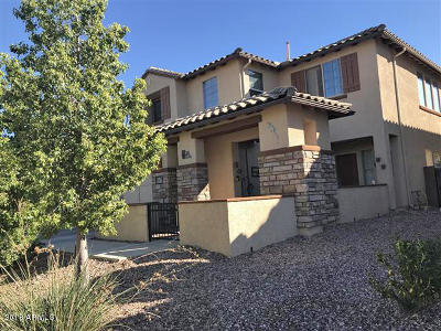Oro Valley Single Family Home For Sale: 1249 W Montelupo Drive