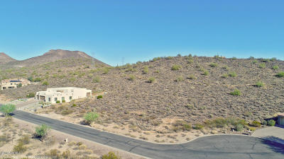 Glendale Residential Lots & Land For Sale: 24213 N 65th Avenue
