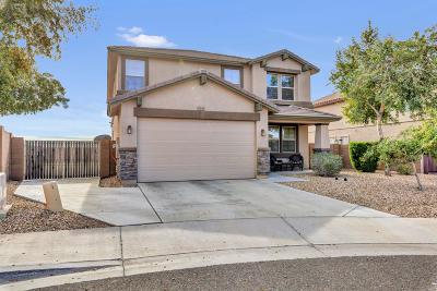 Peoria Single Family Home For Sale: 7533 W Rock Springs Drive
