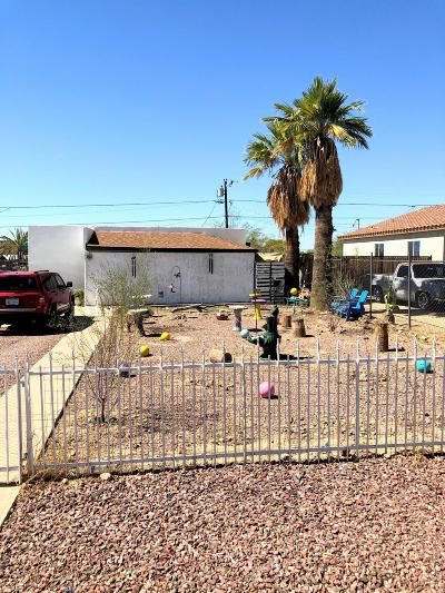 Phoenix  Single Family Home For Sale: 10230 N 11th Avenue