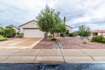 Surprise Single Family Home For Sale: 16506 W Lone Tree Court