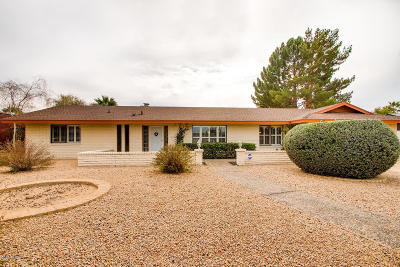 Phoenix Single Family Home For Sale: 409 E Braeburn Drive