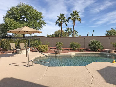Sun City West Single Family Home For Sale: 22719 N Pico Drive