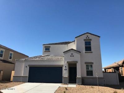 Casa Grande Single Family Home For Sale: 2321 E Alida Trail