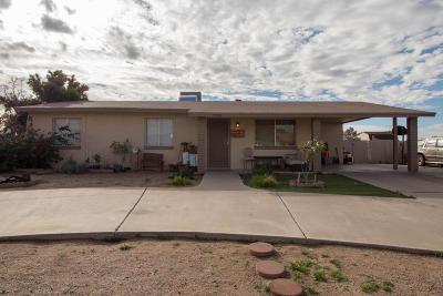 Mesa Single Family Home For Sale: 9539 E Dallas Street