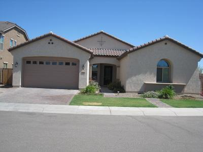 Chandler Rental For Rent: 760 W Yellowstone Way