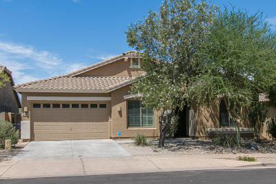 Phoenix Single Family Home For Sale: 35210 N 26th Drive