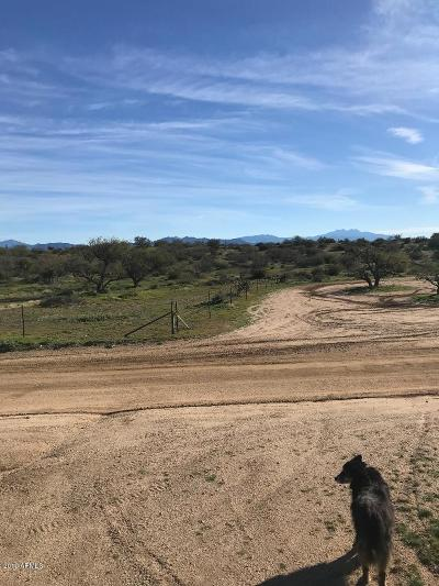 Scottsdale Residential Lots & Land For Sale: 144 E Aloe Vera Street