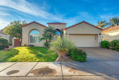 Scottsdale Single Family Home For Sale: 11867 E Terra Drive
