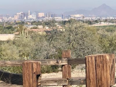 Phoenix Residential Lots & Land For Sale: 1750 W Lodge Drive