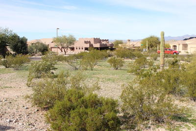 Goodyear Residential Lots & Land For Sale: 11385 S Wilson Lane