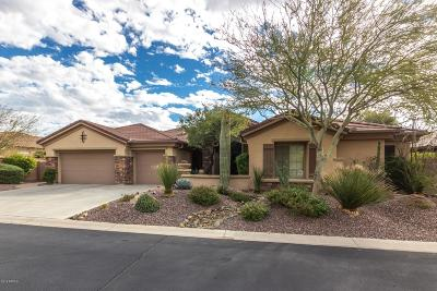 Phoenix Single Family Home For Sale: 41811 N Spy Glass Drive