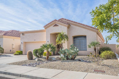 Mesa Single Family Home For Sale: 6611 E Viewmont Drive