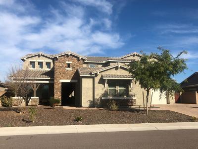 Peoria Single Family Home For Sale: 9418 W Via Montoya Drive
