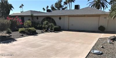 Sun City Single Family Home For Sale: 10433 W Bayside Road