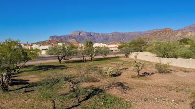 Gold Canyon AZ Residential Lots & Land For Sale: $249,000