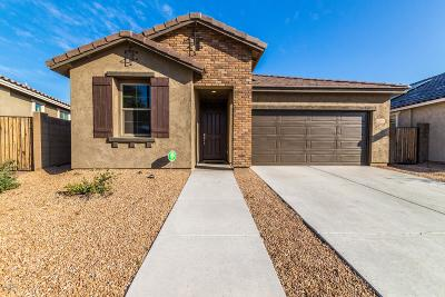 Peoria Single Family Home For Sale: 12044 W Desert Sun Lane