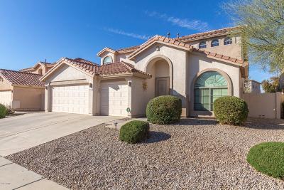 Maricopa Single Family Home For Sale: 19956 N Santa Cruz Drive