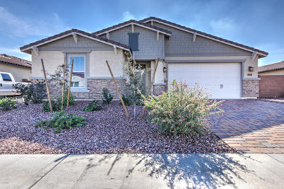 Goodyear Single Family Home For Sale: 18605 W Pierson Street