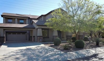 Gilbert AZ Single Family Home For Sale: $489,000