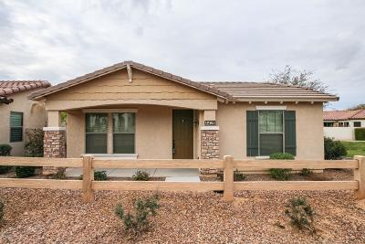 Gilbert Single Family Home For Sale: 4428 E Wildhorse Drive