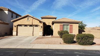 Chandler Single Family Home For Sale: 6830 S Crystal Way