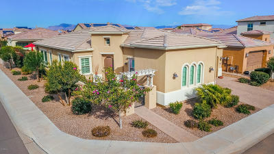 San Tan Valley Single Family Home For Sale: 1502 E Copper Hollow