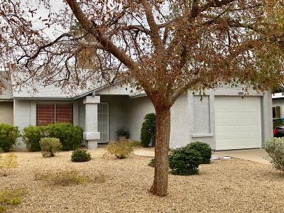 Phoenix Gemini/Twin Home For Sale: 3214 W Mohawk Lane
