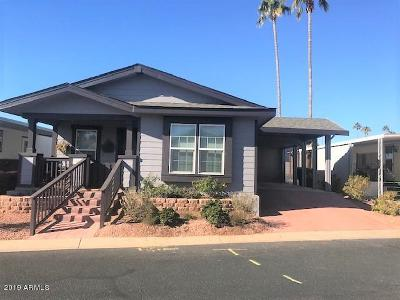 Phoenix Mobile/Manufactured For Sale: 16612 N 1st Avenue