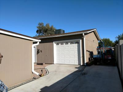 Mesa Single Family Home For Sale: 925 N 95th Street