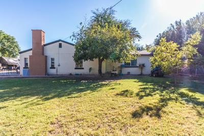 Phoenix Single Family Home For Sale: 29 E Greenway Road