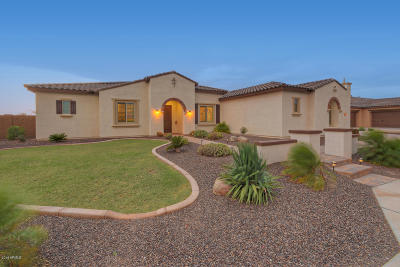 Cave Creek Single Family Home For Sale: 31854 N 61st Place