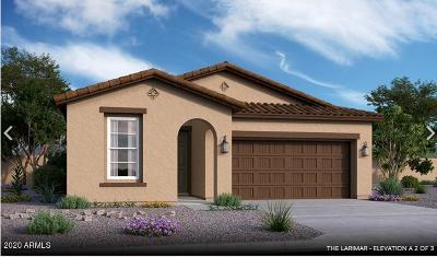 Queen Creek Single Family Home For Sale: 20908 E Kingbird Drive