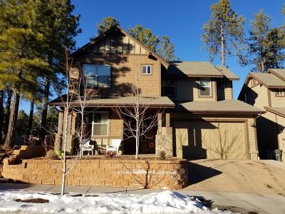 Flagstaff Single Family Home For Sale: 2911 S Pepita Drive