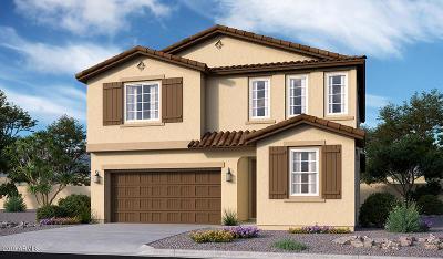 Queen Creek Single Family Home For Sale: 20924 E Kingbird Drive