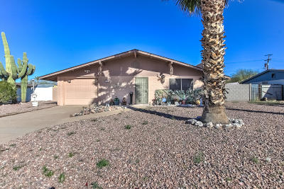 Apache Junction Single Family Home For Sale: 730 E Desert Avenue