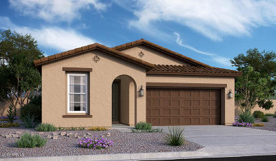 Queen Creek Single Family Home For Sale: 20916 E Kingbird Drive
