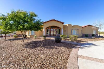 Phoenix Single Family Home For Sale: 3135 W Dynamite Boulevard