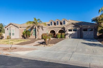 Queen Creek Single Family Home For Sale: 20104 E Stonecrest Drive
