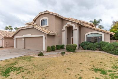 Chandler Single Family Home For Sale: 3921 W Jasper Drive